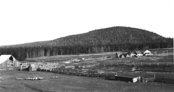 Bridge Creek Ranch outbuildings, 1930s.