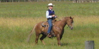 Don on horseback